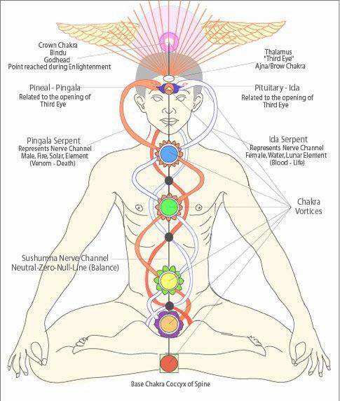 Thai massage energy lines